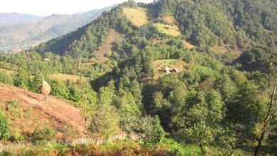 Westgeorgien